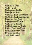 Gedicht • Ich bin der Wald