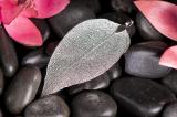 Silbernes Blatt, groß,  versilbert