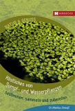 Köstliches von Sumpf- und Wasserpflanzen: bestimmen, sammeln und zubereiten, Markus Strauß